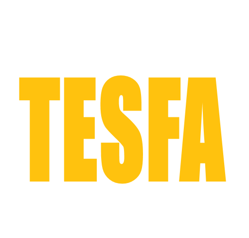 Website Design and Development - Tesfa Business Solutions
